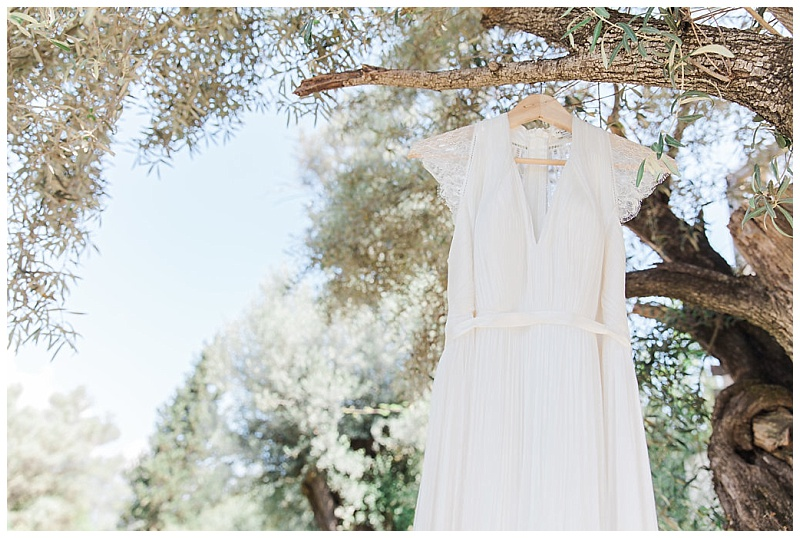 Close up of Catherine Deane Laverne dress hanging in olive tree